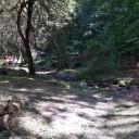 Area de descanso en el Rio de Valvanera.
