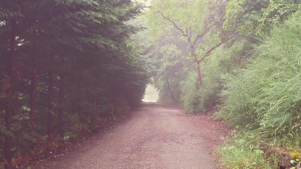 lluvia y niebla alrededor del Monasterio